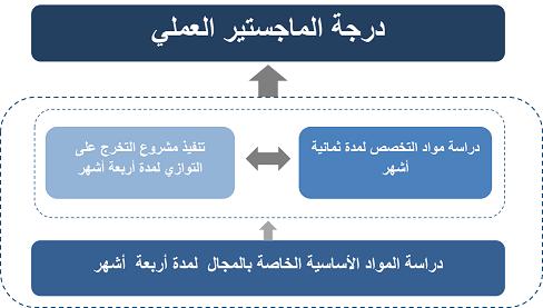 البرنامج الدراسي مبادرة بُناة مصر الرقمية