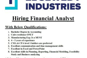 Financial Analyst Vacancy at ElSewedy Industries