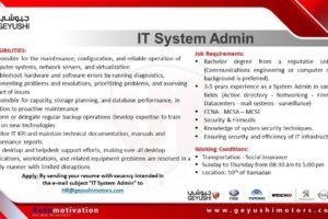 IT System Admin at Geyushi Motors