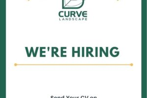 Engineers Careers at Curve Landscape