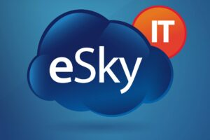 Purchasing Specialist Vacancy at eSky IT